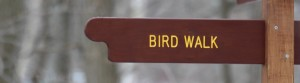 cropped-birdwalk-sign.jpg