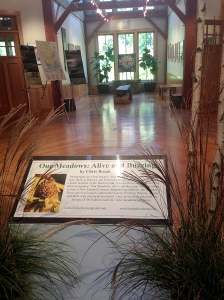 "Photo by Chris Bosak The entrance to the ""Our Meadows: Alive and Buzzing"" exhibit at the Darien Nature Center."