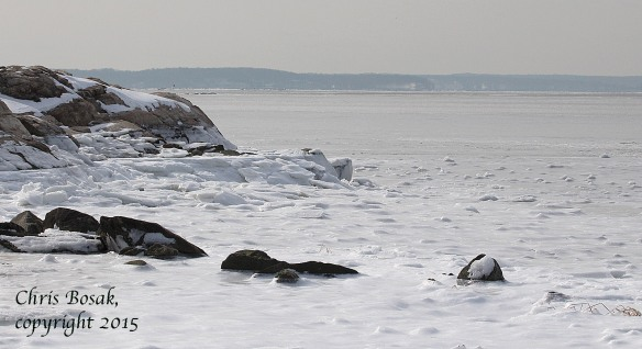 Photo by Chris Bosak Long Island Sound is mostly frozen on Feb. 21, 2015, as shown by this scene from Weed Beach in Darien, Conn.