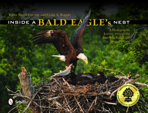 "Cover of ""Inside A Bald Eagle's Nest"""