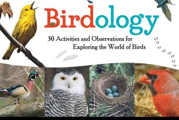 Cover of Birdology