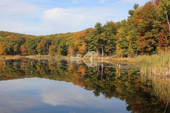Photo by Chris Bosak Fall colors at Little Merganser Lake in Connecticut, fall 2015.