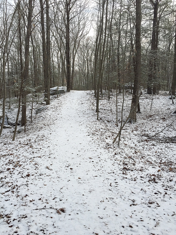 Photo by Chris Bosak The snowy trail ahead, winter 2016.