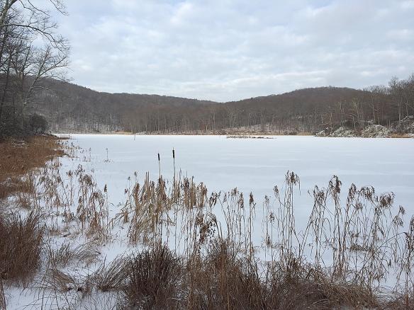 Photo by Chris Bosak View of Little Merganser Lake in Danbury, Conn., winter 2016.
