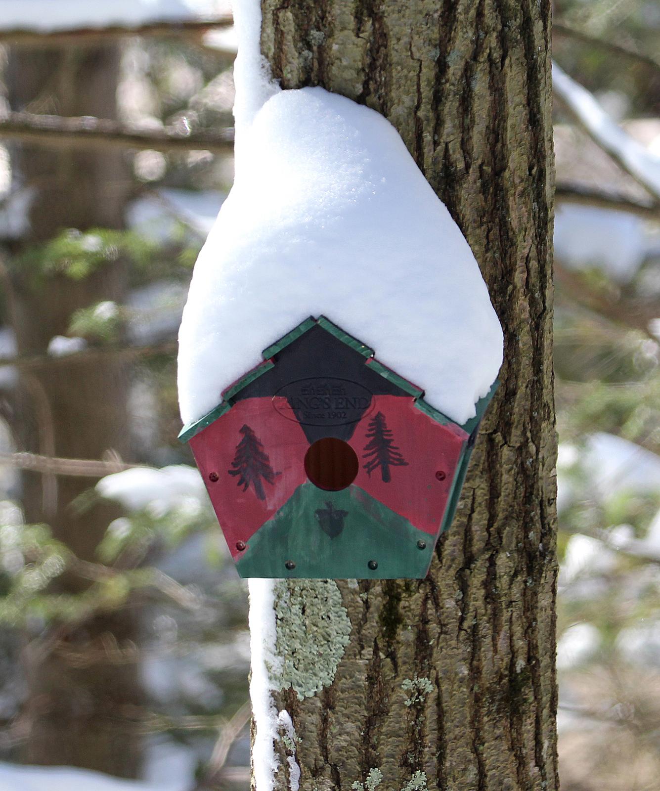 https://birdsofnewengland.files.wordpress.com/2016/02/birdhouse-snow.jpg