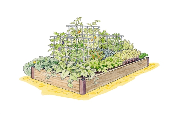 Image by Gardener's Supply Company he High Yield Vegetable Garden Plan enables gardeners to grow more than 50 pounds of produce in only 18 square feet of space.