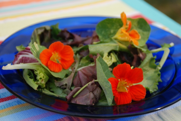 Melinda Myers Add a bit of color and interest to salads with edible flowers like nasturtium.