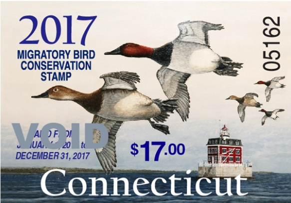 2017 Connecticut Migratory Bird Conservation Stamp, featuring canvasbacks on the Thames River and painted by Mark Thone.