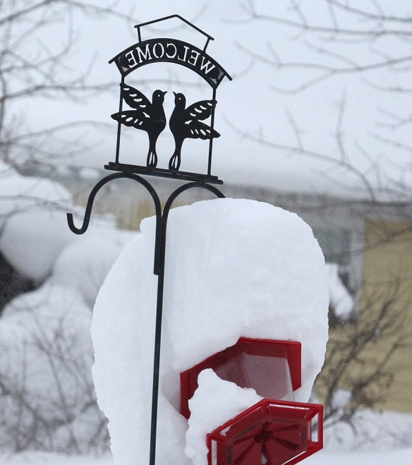 Photo by Chris Bosak Historic snowfall in Erie, Pennsylvania, Dec. 2017.